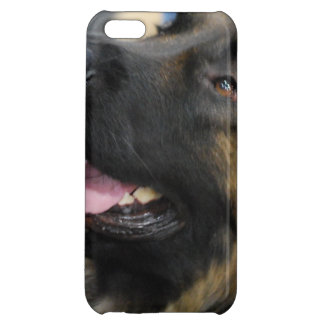Leonberger Case For iPhone 5C