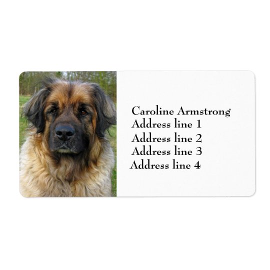 Leonberger dog beautiful custom address labels