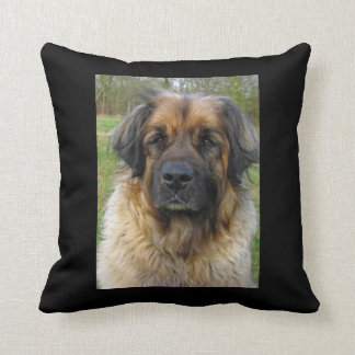 Leonberger dog beautiful photo, cushion, gift cushion