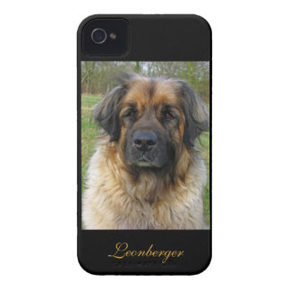 Leonberger dog beautiful photo portrait, gift iPhone 4 case