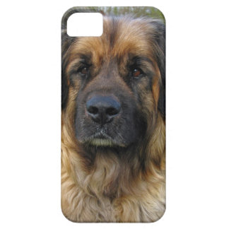 Leonberger dog beautiful photo portrait, gift barely there iPhone 5 case