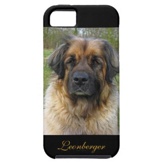 Leonberger dog beautiful photo portrait, gift iPhone 5 cover