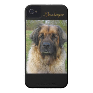 Leonberger dog beautiful photo portrait, gift iPhone 4 Case-Mate cases