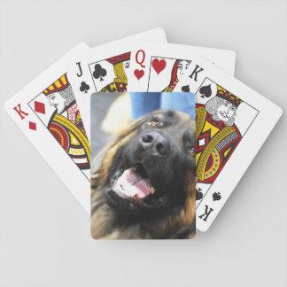 Leonberger Dog Poker Deck