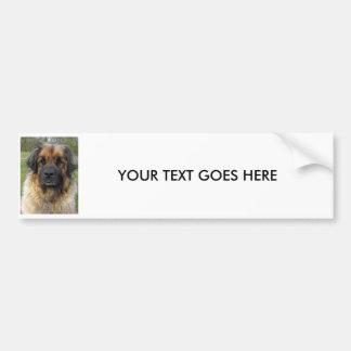 Leonberger dog custom BUMPER STICKER, gift Bumper Sticker