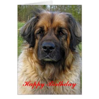 Leonberger dog happy birthday greeting card