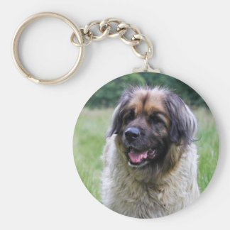 Leonberger dog keychain, keyring gift idea