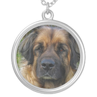 Leonberger dog necklace, beautiful photo, gift silver plated necklace