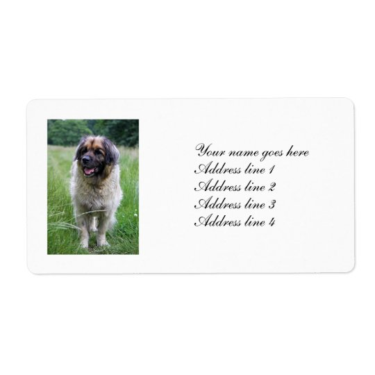 Leonberger dog personalised address labels