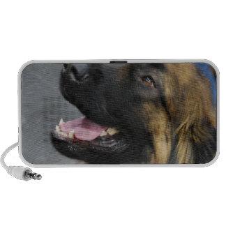 Leonberger Dog Speakers