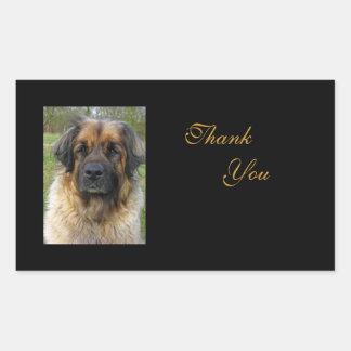 Leonberger dog thank you stickers, beautiful photo rectangular sticker