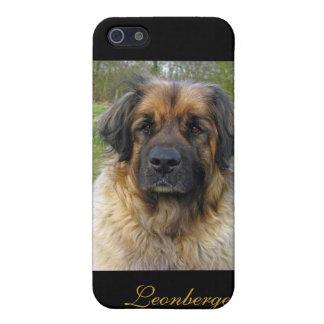 Leonberger iphone 4 case, beautiful photo, gift