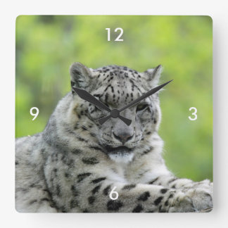 Leopard_2015_0310 Square Wall Clock