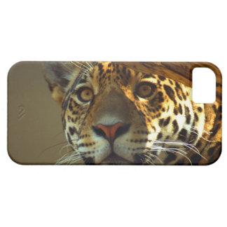 leopard 2 iPhone 5 case
