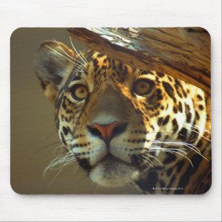 leopard 2 mouse mat