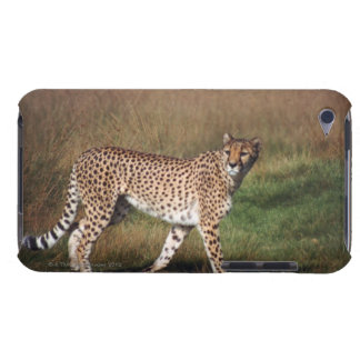 leopard 3 Case-Mate iPod touch case