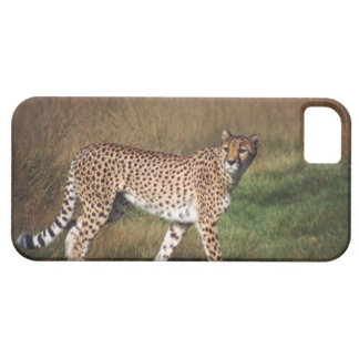 leopard 3 iPhone 5 case