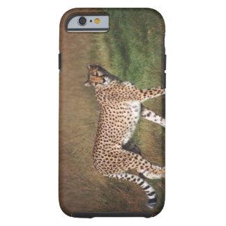 leopard 3 tough iPhone 6 case