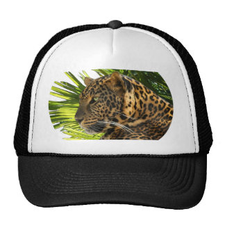 LEOPARD AND PALMS MESH HATS