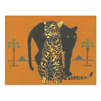 Leopard and Panther Postcard