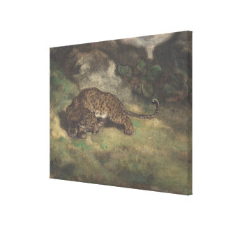 Leopard and Serpent Canvas Print