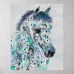 leopard appaloosa horse poster