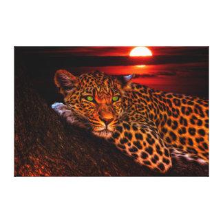 Leopard At Sunset Canvas Print