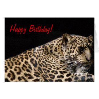 Leopard Birthday Card