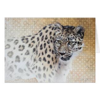 Leopard Blank Card by Andrew Denman
