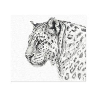 Leopard by Svetlana Ledneva-Schukina G013 Canvas Print