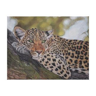Leopard cat lying in a tree canvas print