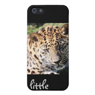 Leopard cub baby cute photo iphone 4 case