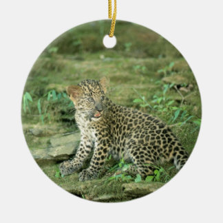 leopard cub christmas ornament