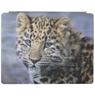 Leopard Cub iPad Cover (all models)