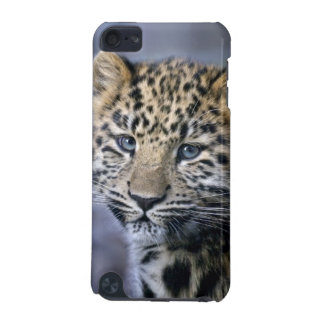 Leopard Cub iPod Touch Case