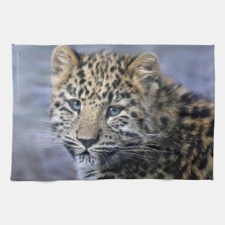 Leopard Cub Kitchen Towel