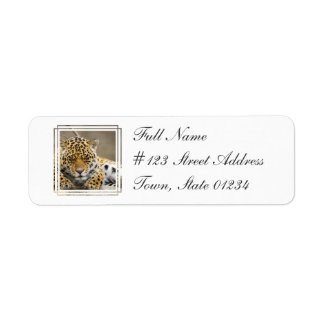 Leopard Cub Return Address Mailing Label Return Address Label