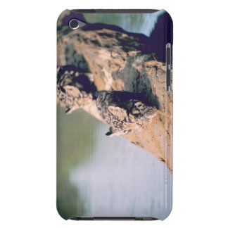 Leopard cubs on log barely there iPod cover