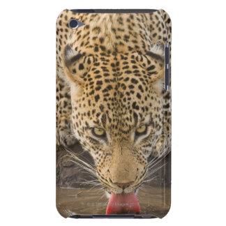 Leopard drinking, Greater Kruger National Park, iPod Case-Mate Cases