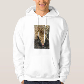 Leopard drinking, South Africa Hoodie