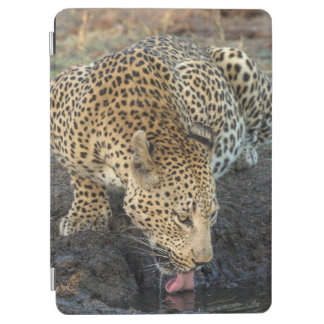 Leopard Drinking Water iPad Air Cover