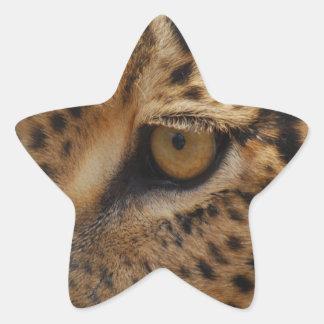 Leopard Eye Star Stickers