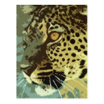 Leopard Eyes Postcard