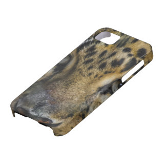 Leopard Face of Hunger iPhone 5 Case