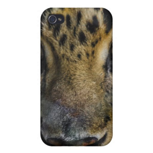 Leopard Face of Hunger iPhone 4 Case