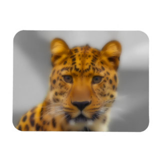 Leopard Face Magnets