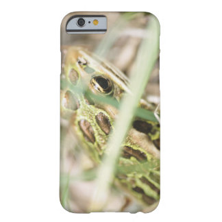 Leopard frog in grass barely there iPhone 6 case