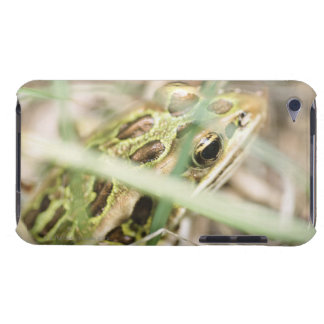 Leopard frog in grass barely there iPod covers