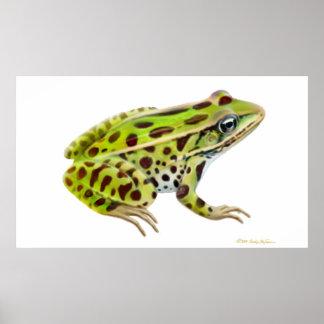 Leopard Frog Print