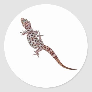 Leopard Gecko Classic Round Sticker